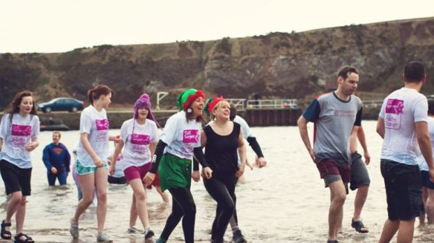 Nippy Dip: Volunteers take part in last year's event.