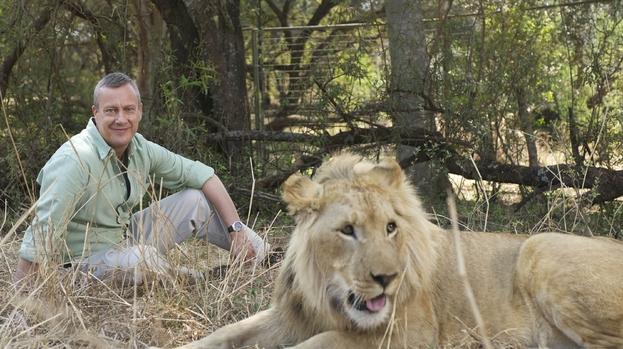 Wild at Heart TV Series