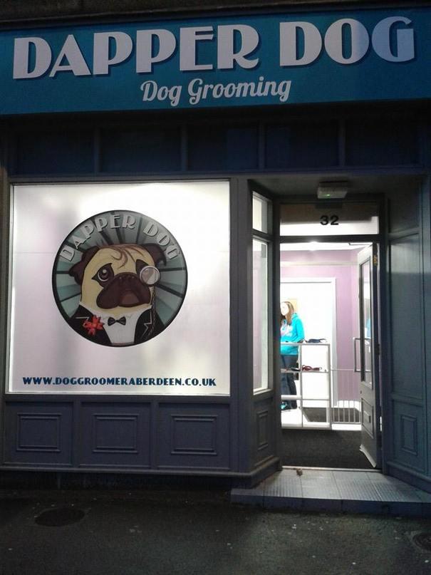 Dog Grooming Torry Aberdeen
