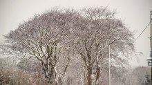 March Snow in Aberdeen 2013