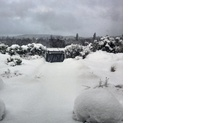 A snow-covered garden in Aboyne.