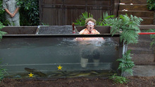 I'm A Celebrity 2014: day 11 in the jungle