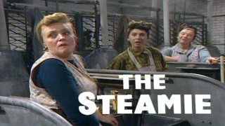The Steamie