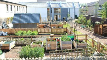 Power Of Food Festival Celebrates Edinburgh S Community Gardens Stv Edinburgh Edinburgh