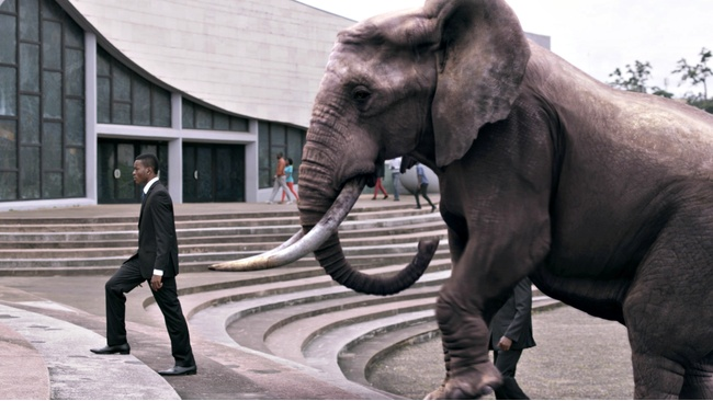 From Africa with love as film festival returns to Scotland
