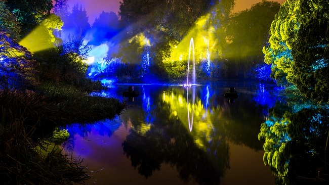 Talk to the plants and wander through the seasons at new Botanic Lights