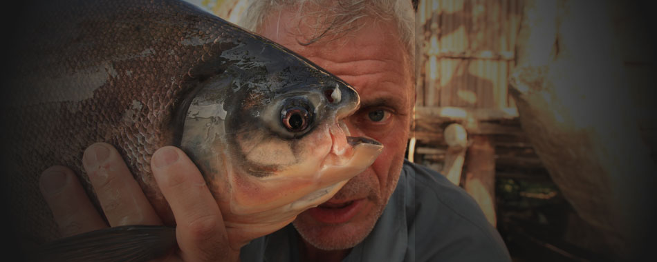 River Monsters feature image