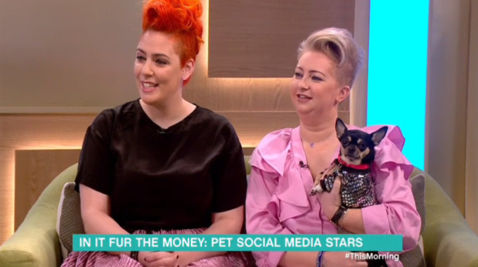 This Morning - Pet social media stars