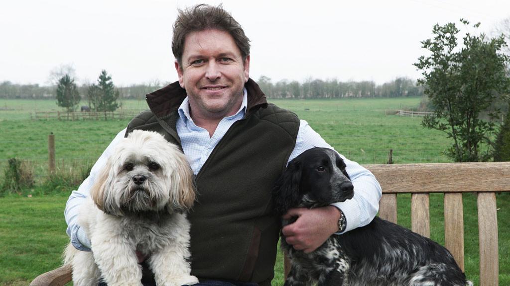 Britain's Favourite Dogs