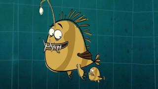 I'm a Fish