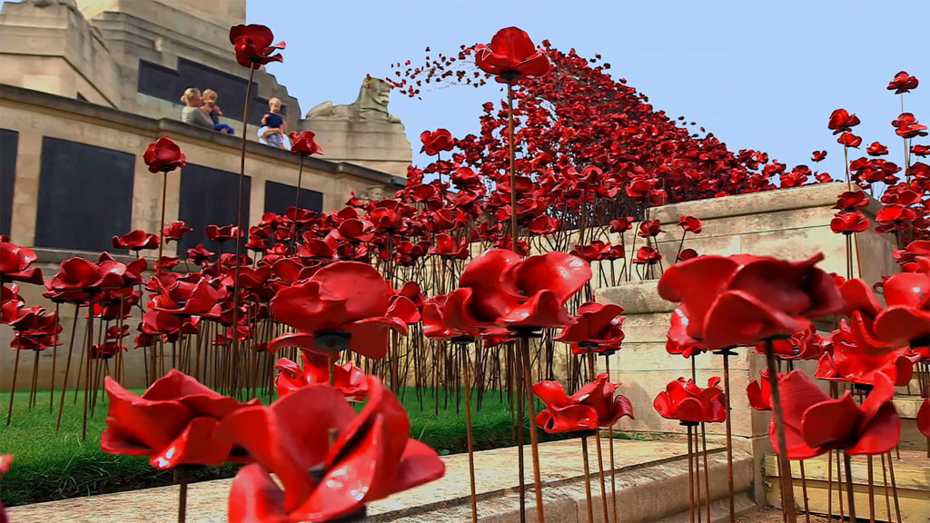 Britain's Poppies