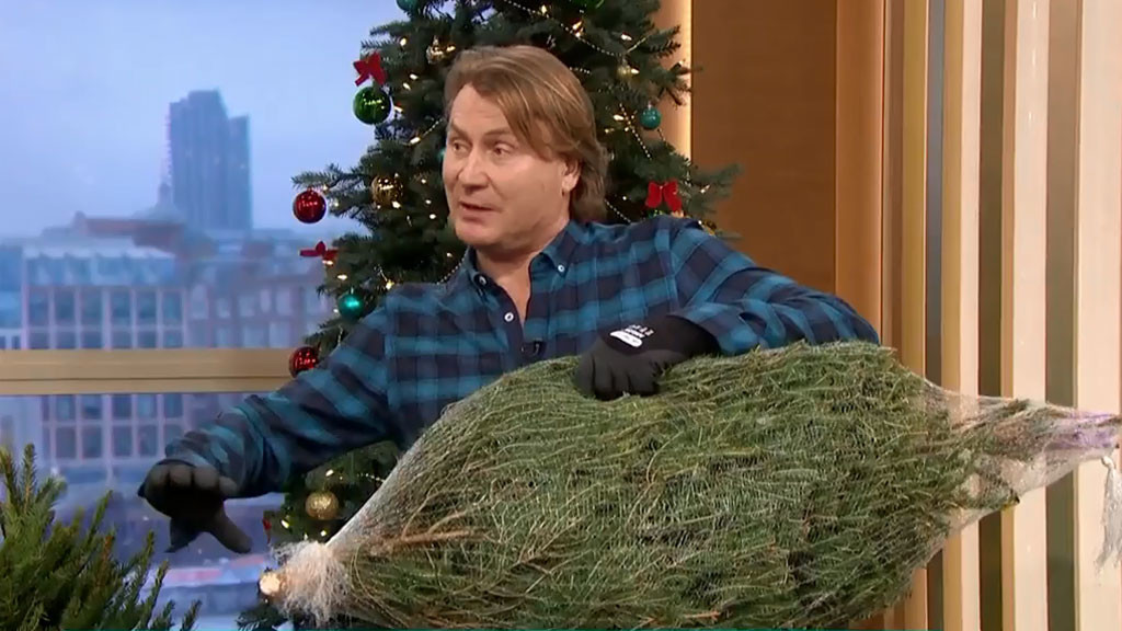 How we could have kept our Christmas tree alive
